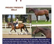 Congratulations to Elizabeth Gilmour on her purchase of Bella!