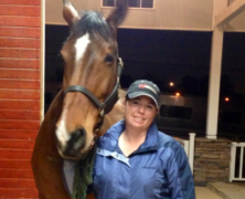 Our Awesome Sales Manager Amanda getting another lovely horse off to their new home!